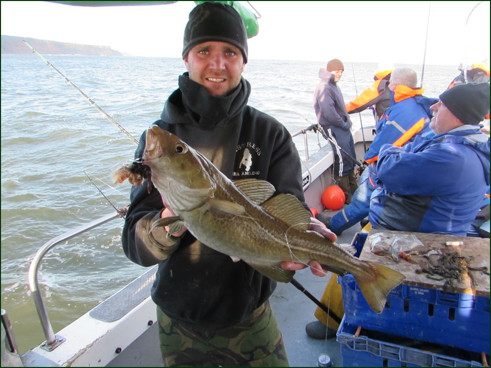 Whitby Uptiding cod