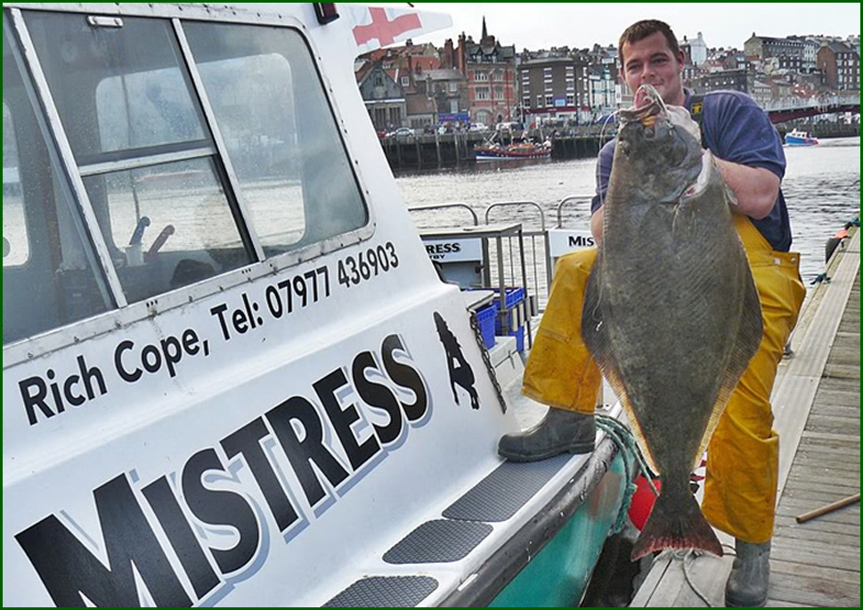 Whitby Halibut